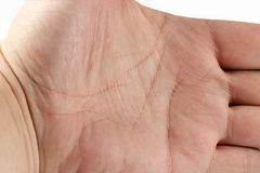 Man hand, palmistry Stock Images