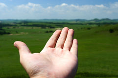 Man hand and prairie. The man hand and dam prairie Stock Images
