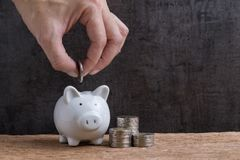 Man hand putting coin into piggy bank with stack of coins towers Royalty Free Stock Image