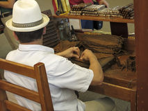Man Hand Rolling Tobacco to Make Cigars Stock Photography