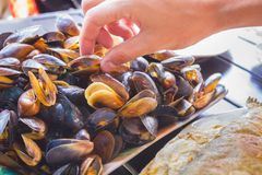 Man hand take mussels Stock Photo