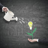 Man hand watering light bulb plant Royalty Free Stock Photography