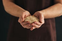 A man with a handful of oat flakes royalty free stock photography