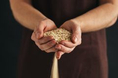 A man with a handful of oat flakes royalty free stock image
