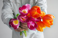 Man handing out a bouquet of Tulips flowers Stock Image