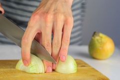 Man hands cutting onion Stock Images