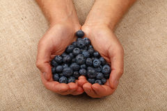 Man hands with heart shaped blueberries Stock Photos