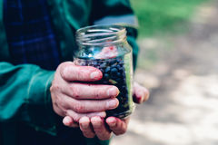 Man hands holding jar of forest blueberry Royalty Free Stock Photos