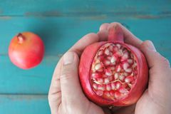 Man hands holds one Pomegranate Fruit with seeds. Food background and texture for the Jewish festival of Sukkot Feast of Tabernacles in Israel and around the Stock Photography