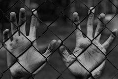 Man hands in jail. Imprisonment. Poverty, suffering. Royalty Free Stock Image