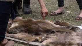 Man hands picking up wild animal fur of the ground. Animal coat skin for sale at rural village.  stock video