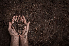 Man hands on soil background captured from above. Stock Photography