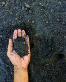 Man  hands on soil background captured from above (top view, fla Royalty Free Stock Images