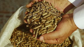 Man hands takes pellets out of the bag stock footage