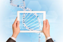Man hands using tablet pc. Image of DNA helix on. Tablet screen Stock Photos