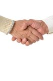 Man handshake Royalty Free Stock Image