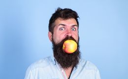 Man handsome hipster with long beard eating apple. Man diet nutrition eats fruit. Healthy nutrition concept. Hipster. Hungry bites juicy ripe apple. I love royalty free stock photos