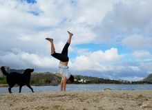 Man Handstands on beach with black dog next to him in Hawaii Kai stock photography