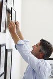 Man Hanging Picture Frames On Wall At Home Royalty Free Stock Photo