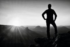 A man has his hands on  hips. Sportsman  silhouette in nature at daybreak. Royalty Free Stock Image