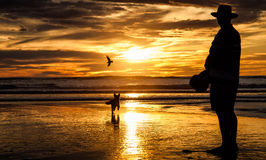 Man with hat walking a dog on Piha Beach. In sunset, New Zealand Royalty Free Stock Photos