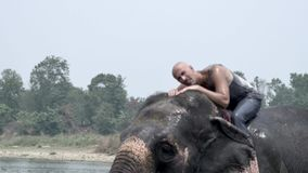 Man have a shower on the elephant stock video footage