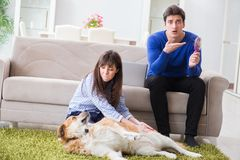 The man having allergy from dog fur Royalty Free Stock Photography