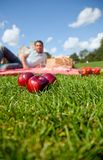 Man having a picnic Royalty Free Stock Photography