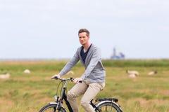 Man having sea coast bicycle tour at levee. Man having bicycle tour with bike at levee with sheep royalty free stock photo