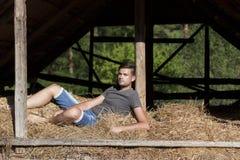 Man on hay Stock Image