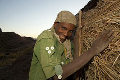 A man with a hay bundle, Ethiopia Stock Photo
