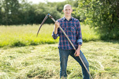 Man on  haymaking Royalty Free Stock Photo
