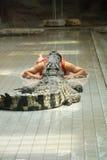 Man with head inside crocodile Royalty Free Stock Photo