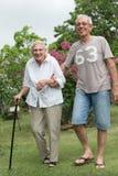 Man helping elderly lady. Man helping happy senior lady walking in garden Stock Photos