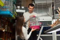 Man helping girl in petshop. Young men helping girl to choose rainforest cage in store Stock Images