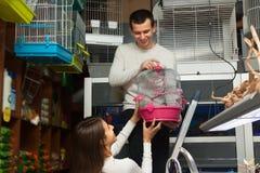 Man helping girl to choose cage. Young men helping girl to choose rainforest cage in petshop Stock Photos