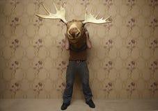 Man is hiding. Behinde a moose head Stock Image