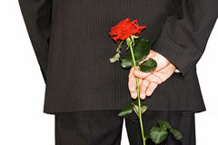 Man hiding back red rose. Man in black suite hiding back red rose Royalty Free Stock Image