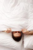 Man hiding in bed under sheets. Funny man hiding in bed under the sheets Stock Images