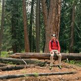 Man Hiker with backpack in forest. Traveler male in woods.  Royalty Free Stock Photos