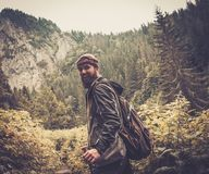 Man hiker walking in mountain forest Stock Image