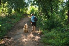 Man hiker walking up on a footpath in the forest with his dog on royalty free stock photos