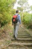 Man hiking alone Royalty Free Stock Photo