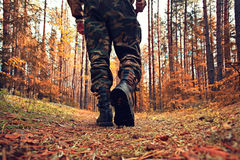 Man hiking at autumn forest Stock Images