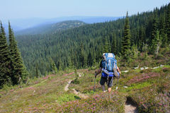 Man Hiking With Backpack Stock Photo
