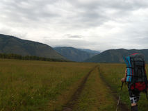 Man hiking with backpack and hiking sticks in Siberia mountain valley Royalty Free Stock Photos