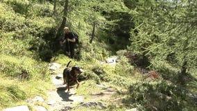 Man hiking with dog. Middle aged man with German Pinscher dog hiking through alpine valley Dorfertal in the Hohe Tauern region below the Grossglockner, Austria stock video