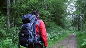 Man hiking through the forest. Camera follows him. Man hikes on mountain trail stock footage