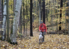 Man Hiking in Forest with Dog Royalty Free Stock Photo