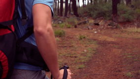 Man hiking through a forest. In slow motion stock video footage